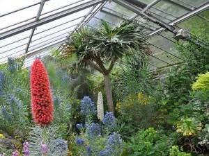 © Botanischer Garten Erlangen