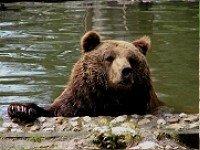 © Tiergarten Straubing