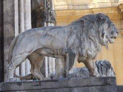 Löwe auf dem Odeonsplatz München
