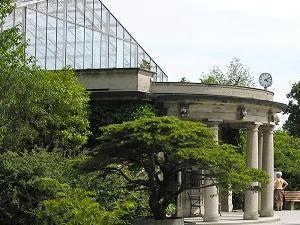 © Botanischer Garten München