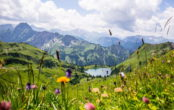 Bayern Urlaubsziel